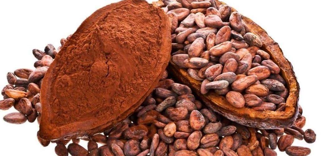Какао бобы, фото