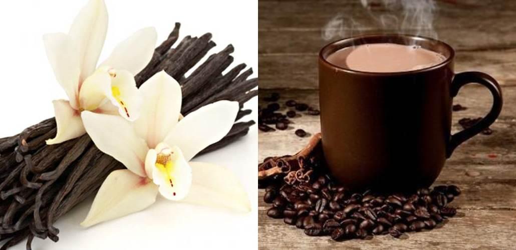Стручки ванили и чашка