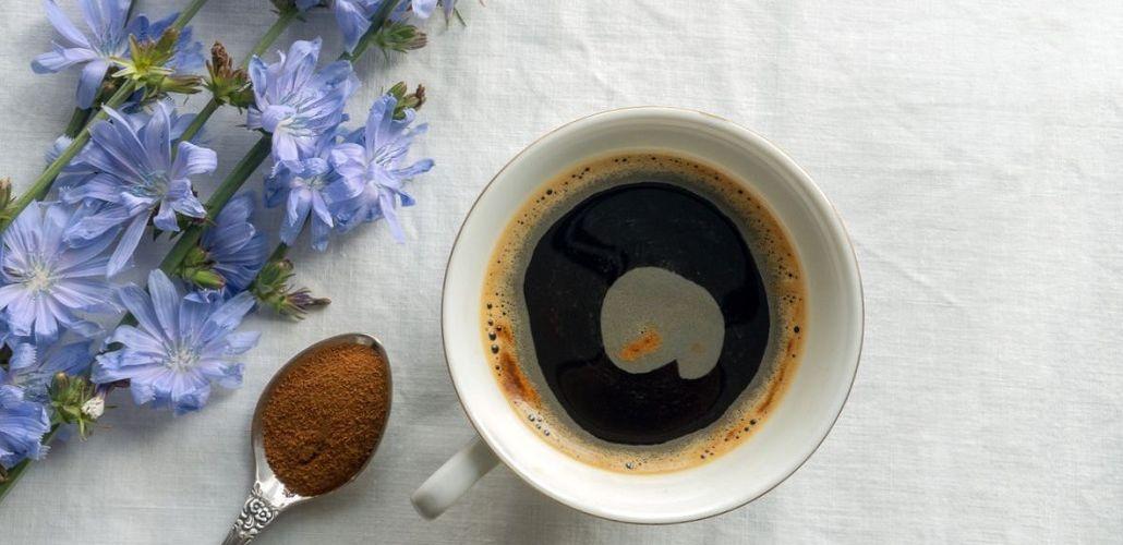 Цикорий вместо кофе, фото
