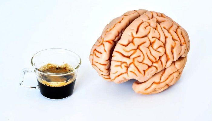 Влияние кофе на мозговую активность, фото